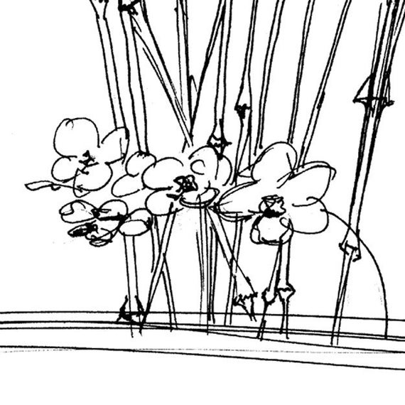 Japanese Orchid and Bamboo set of 12 sketch art cards card set