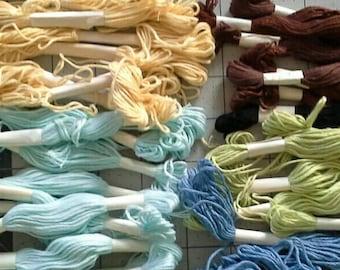 36 Skeins Embroidery Floss, Brown, Light Green, Blue, Light Blue, Yellow ET0106