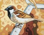 """Bird Art Print, 8"""" x 8"""" - House Sparrow"""