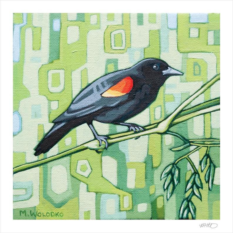 Bird Art Print 8 x 8  Red-winged Blackbird image 1