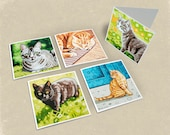 Cat Greeting Cards - Set of 5