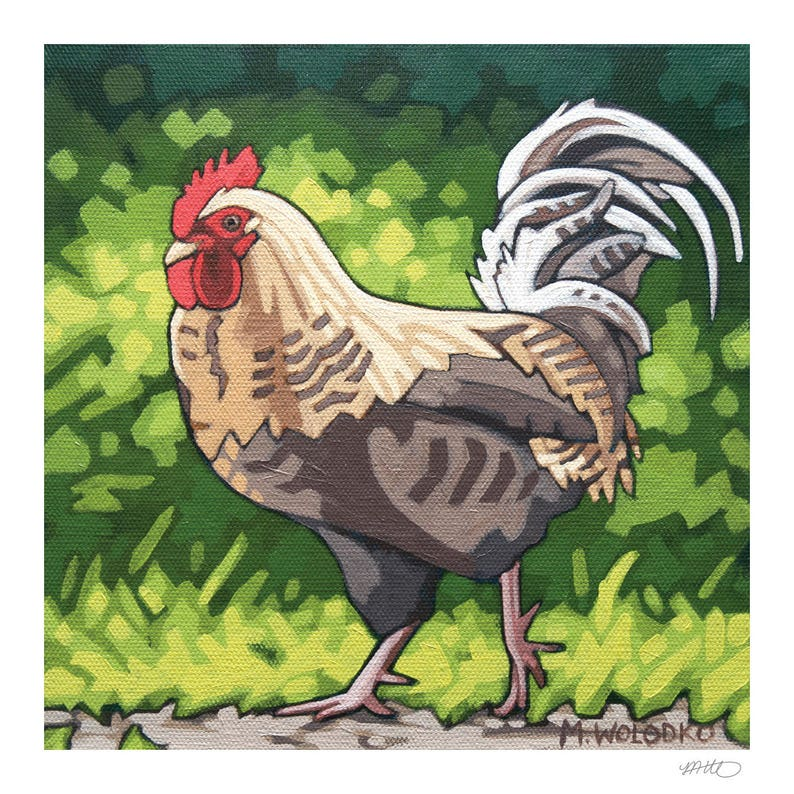 Chicken Art Print 8 x 8  The Boss image 0