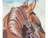 "Horse Art Print, 8"" x 8"" - Ears"