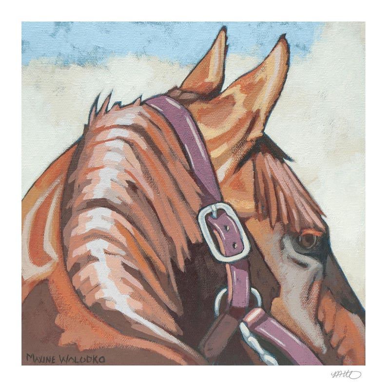 Horse Art Print 8 x 8  Ears image 0
