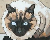 "Siamese Cat Art Print, 8"" x 8"""