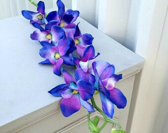 Blue Orchid Flower Etsy