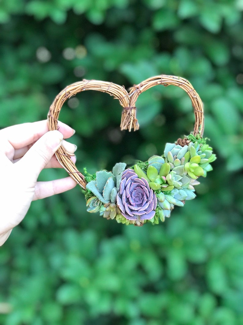 Made-to-Order 5 Living Succulent Heart Wreath