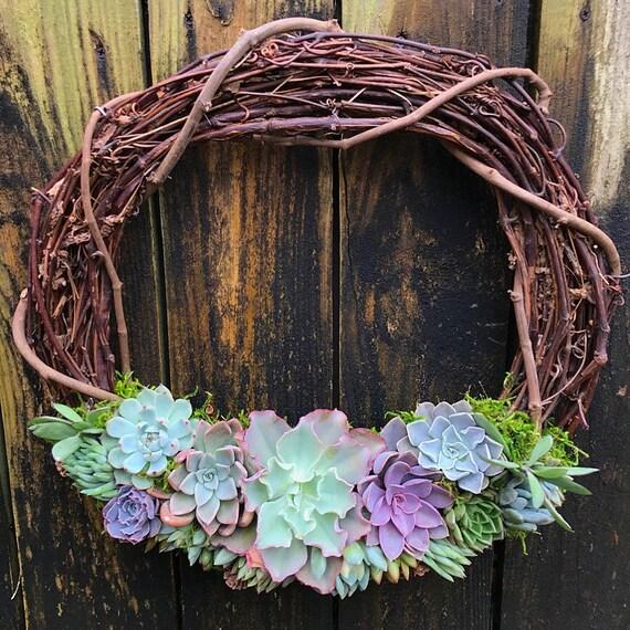 Succulent Driftwood Wreath 18 inch