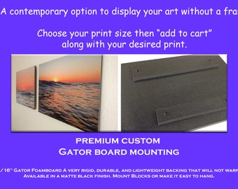 Premium Custom Gator Board Photo Print Framing Display Option