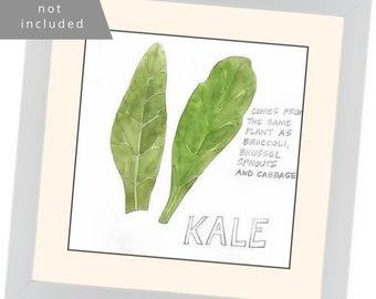 "Original Watercolor: ""Kale"" Series Nosh Words"