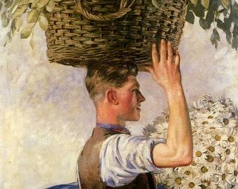 HANDSOME YOUNG MAN Portrait William Bruce Ellis Ranken Print Oil Painting Basket Daisies Gay Interest Flowers Floral Art