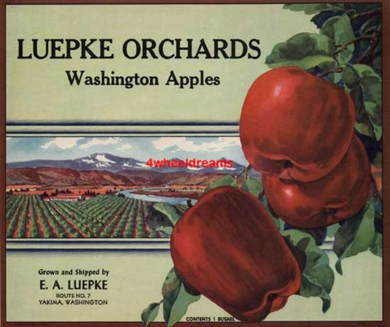 1950 Luepke Orchards Big Red Apples Scarce Lithograph Crate Label Yakima WA