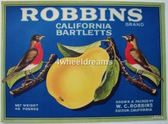 1920s Robins Birds Red Breast W C Robbins Bartlett Pears Crate Label Scarce