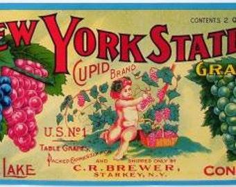 1920s Starkey NY New York State Grapes Cupid Brewer Seneca Lake Original Label