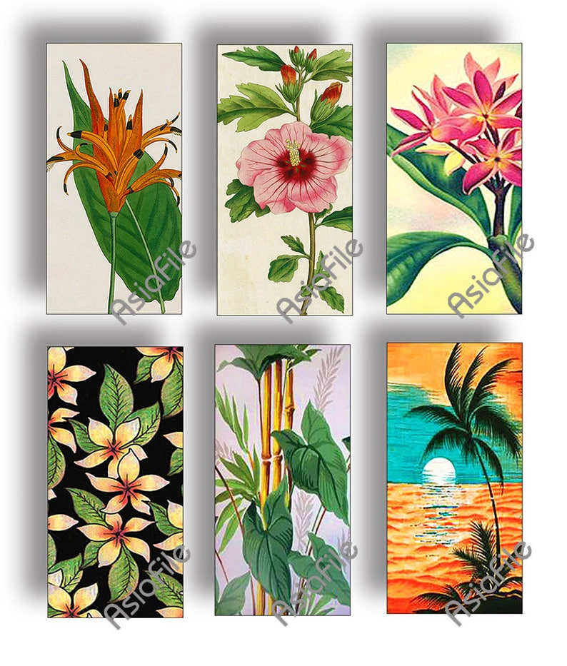 DIGITAL 1 X 2 Images Printable Hawaiian Flowers Vintage Hawaii Tropical Instant Download  Scrapbook Collage Stationery Paper Crafts CS 536