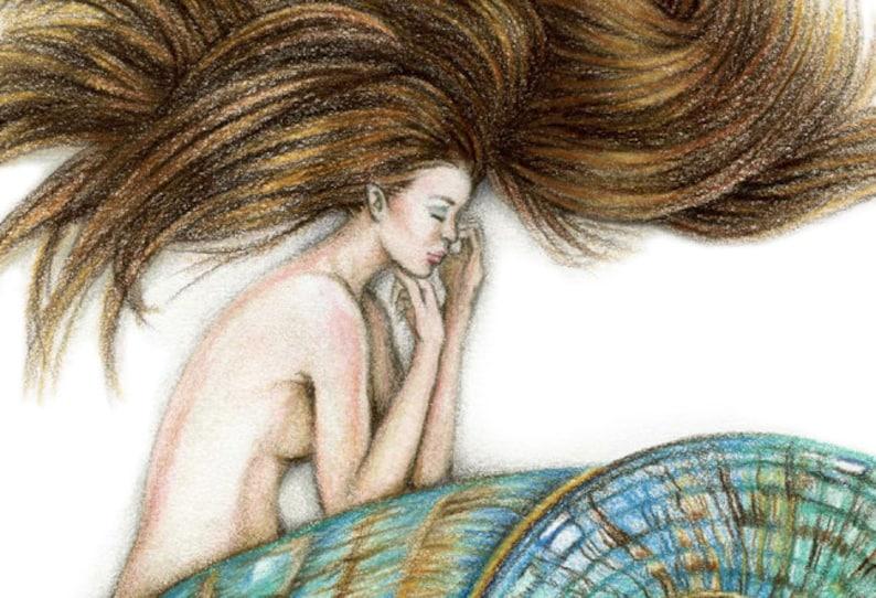 8x10 inch PRINT Mermaid Sleeping in Shell Art Unframed Colour Pencil Drawing Jade Turbo Shell