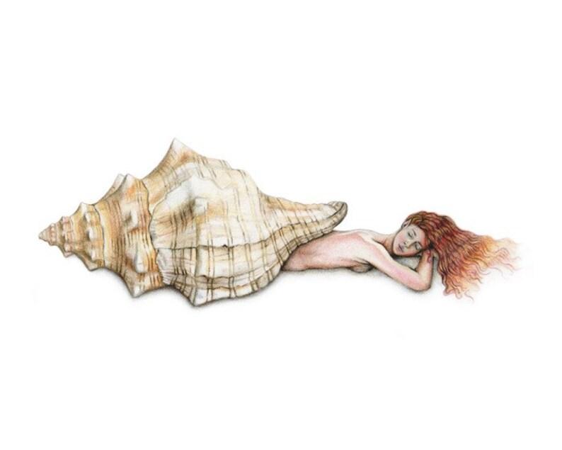 8x10 inch PRINT Mermaid Sleeping in Conch Shell Art Unframed image 0