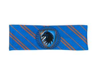 Blue Eagle House Pride Workout Headband