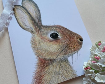 Cottontail Rabbit Card   Colored Pencil Illustration   Enchanted Woodland   Blank Greeting