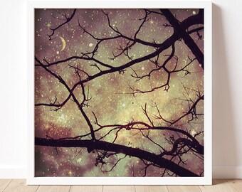Starlight | Moon Art Print | Fine Art Photography Print  | Nature Photography | Starry Night Art Print | Fantasy | Moon Light | Moon Lover