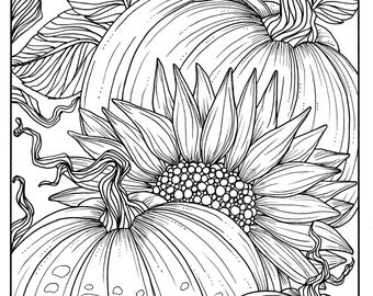 Pumpkins And Sunflower Digital Coloring Page Fall Adult Digi Stamp Thanksgiving