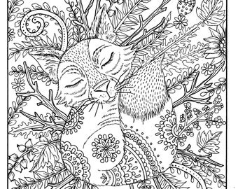 Fall Fox Coloring Page Digital Adult Digi Thanksgiving Pages To Color