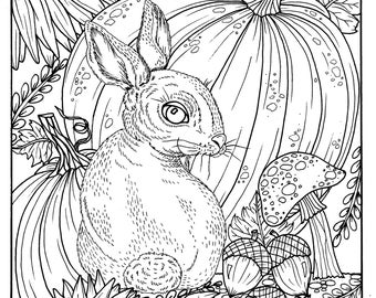 Fall Bunny And Pumpkin Coloring Page Digital Digi Adult Pages Books Thanksgiving