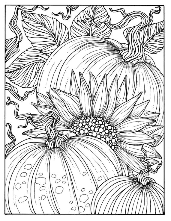 Pumpkins And Sunflower Digital Coloring Page Fall Adult Etsy