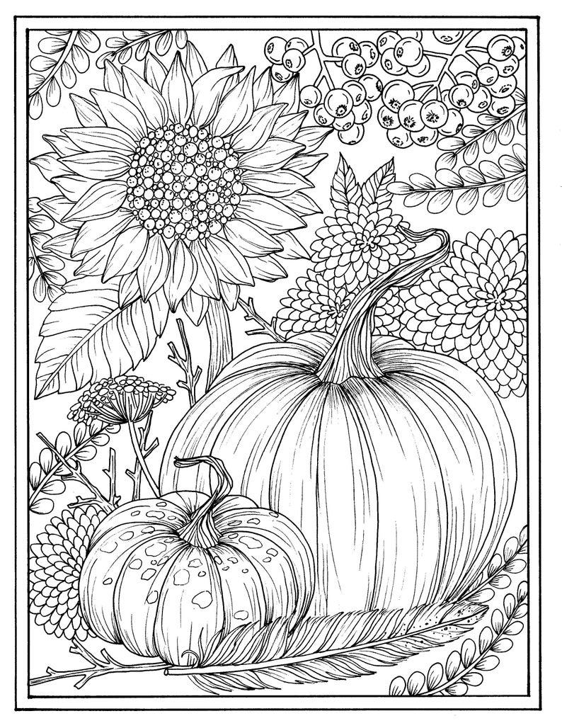 Kleurplaten Herfst Winter.Bloemen En Pompoenen Digitale Kleurplaat Thanksgiving Etsy