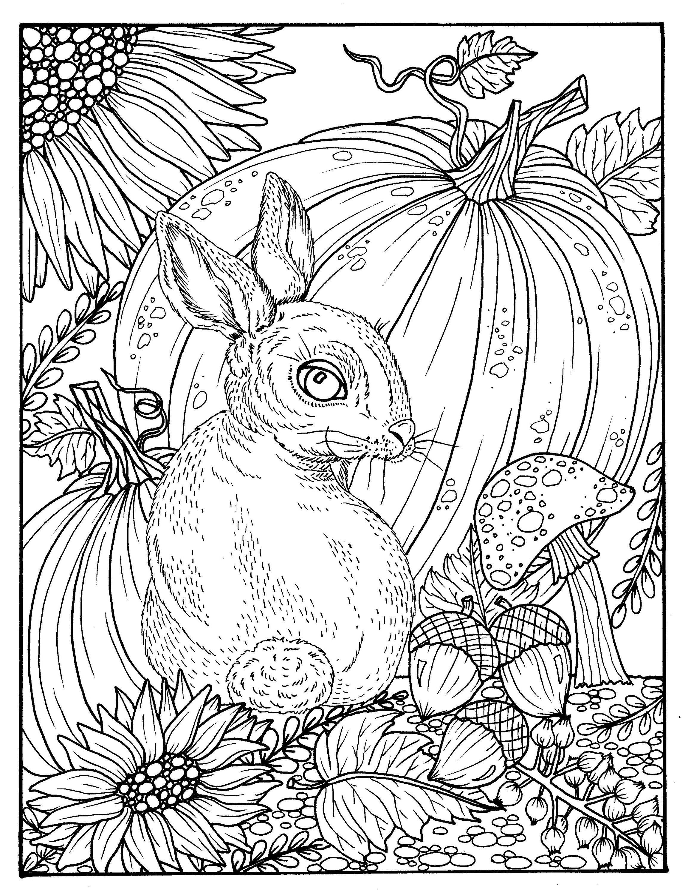 Fall Bunny and pumpkin coloring page digital digi adult | Etsy