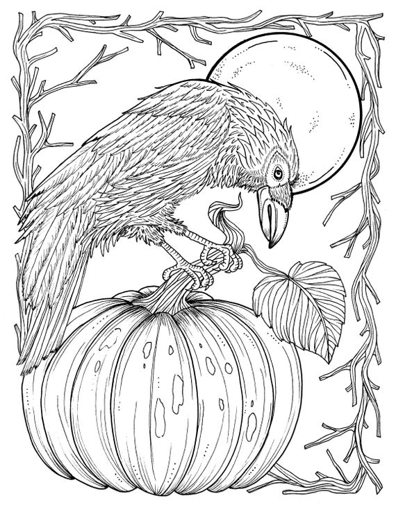 digital coloring pages Fall Crow Digital Coloring page Thanksgiving harvest Adult | Etsy digital coloring pages