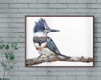 Belted Kingfisher Print, Bird Illustration, Digital Drawing, Animal Wildlife Art Postcard  BK1