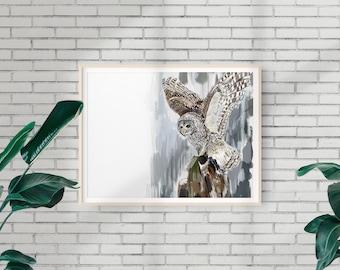 Barred Owl Print, Bird Illustration, Digital Drawing, Animal Wildlife Art Postcard  OWL4