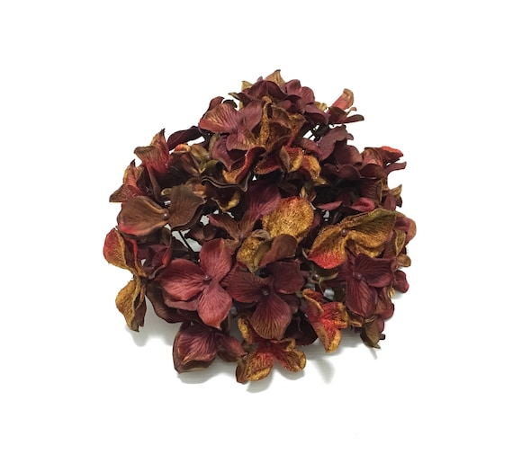 Silk flowers one hydrangea head in burgundy rust red brown etsy image 0 mightylinksfo