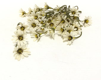 Ivory Artificial Wild Daisy Stems - Flower Crown, Halo, Wildflowers, Artificial Flowers, Silk Flowers, Wedding Flowers, Hair Accessory