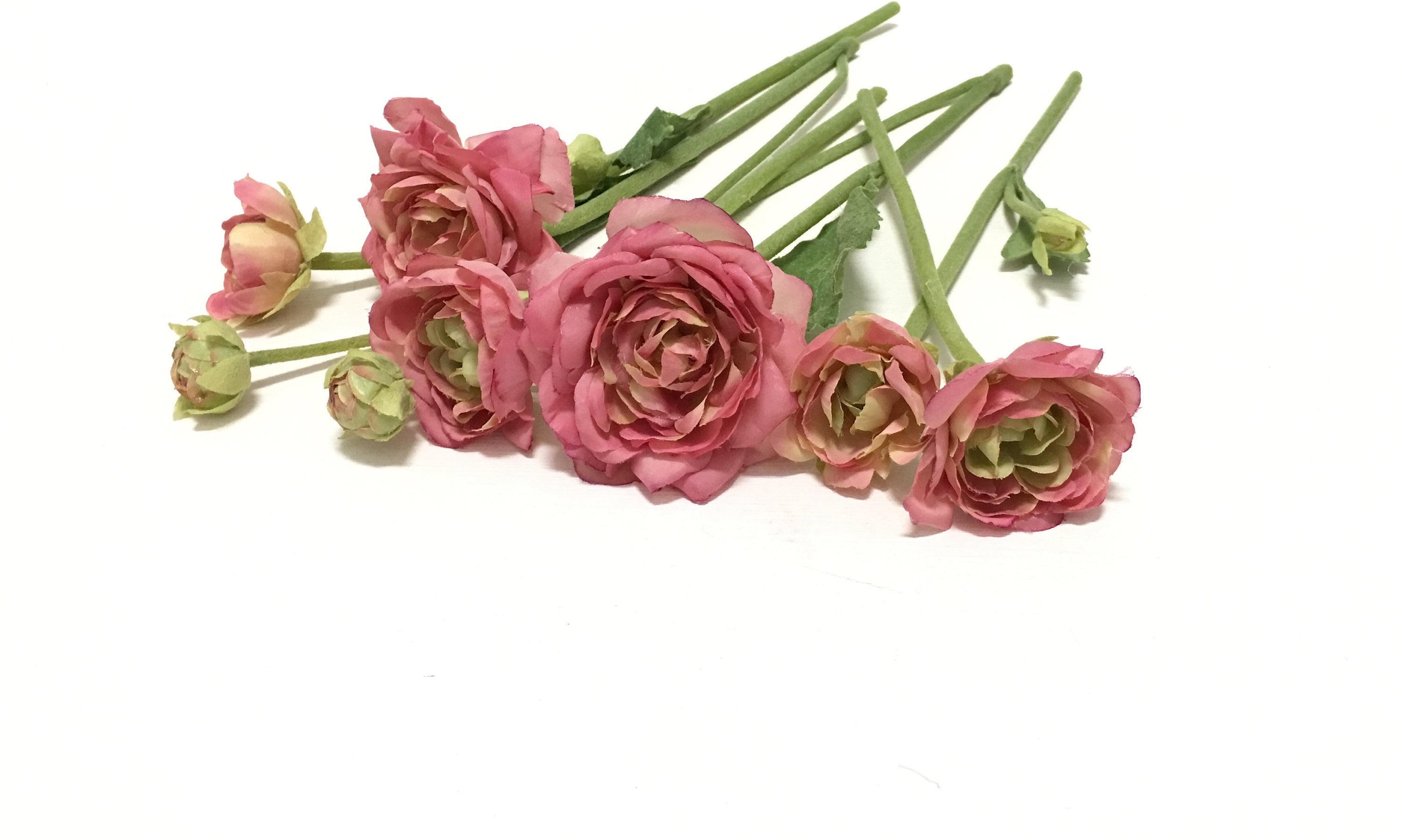 Artificial Dusty Pink Ranunculus Flowers Bud To Bloom On Etsy