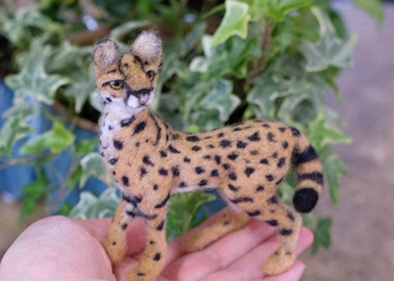 Company serval zipper Buco