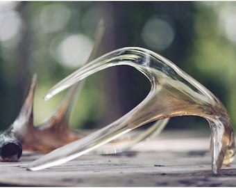 Crystal Golden Antlers