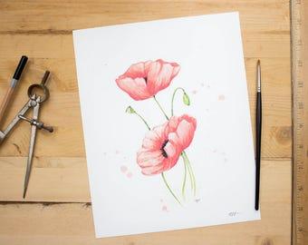 Poppies - botanical art print of poppies