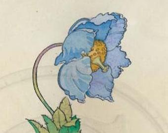 Blue Poppy, Welsh Poppy, Meconopsis Grandis, Nature, Vintage 1920s Print