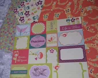 Pixie-Licious Collection 24 6x6 Sheets paper and 1-12x12 Sheet  Elements by Cosmo Cricket