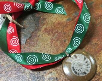 Prehistoric fossil ammonite Xmas ornament genuine Devonian ammonite fossil natural brown  red green ribbon spiral geology seashell Christmas