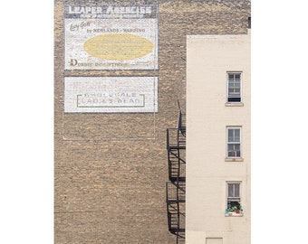 Ghost Signs and Gardens