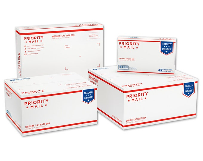 Priority Mail 2-3 day shipping upgrade inside USA