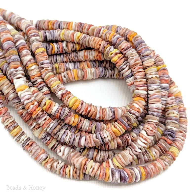 Pecten Shell Heishi 6mm Multicolored Thin Natural Shell image 0