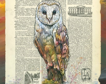 Barn Owl Illustration on Vintage Dictionary Page - Museum Quality Giclée Print