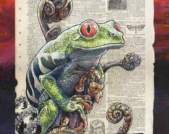 Rain Forest Tree Frog Archival Print - Museum Quality