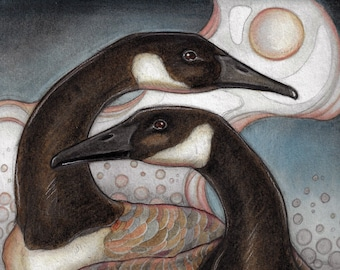 Blank Greeting Card....Canadian Geese in Springtime  by Lisa Ferguson...Art Card...Bird Art...Canadian Geese...Canadian Art...Canada