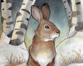 Blank Art Card....Rabbit In The Birches  by Lisa Ferguson....Rabbit Art...Wildlife Art....Canada