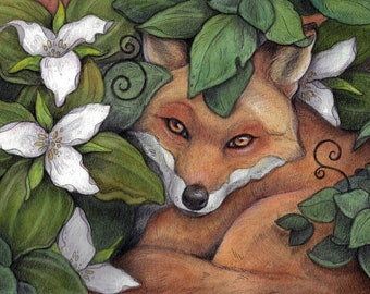 Fox in Trilliums ...Blank Greeting Card